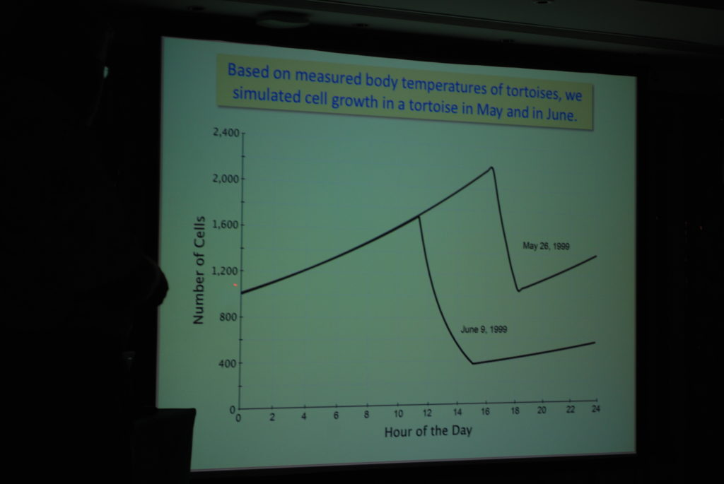 graphs-showing-how-the-mycoplasma-grows-and-dies-throughout-the-day-due-to-experiencing-various-temperatures